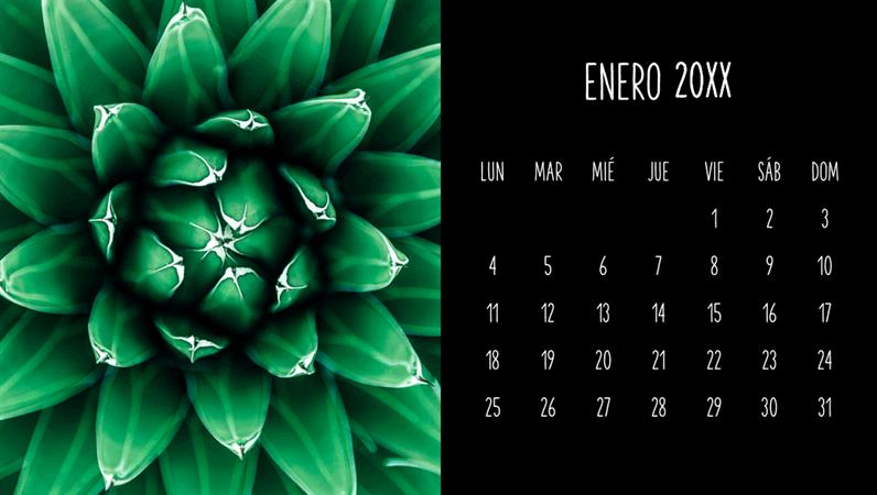 Calendario mensual de delicias