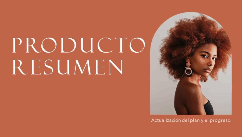 Presentación de resumen del producto
