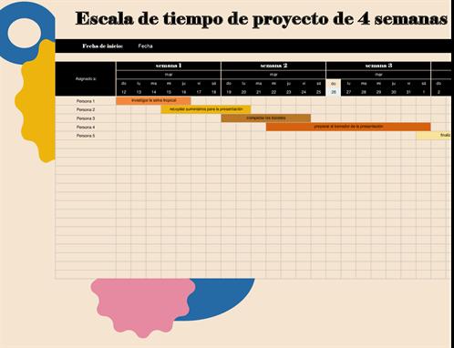 Escala de tiempo del proyecto