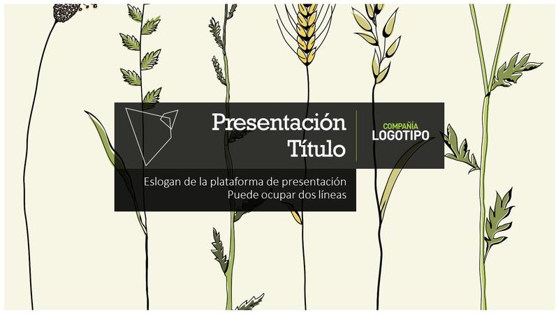 Plataforma de presentación