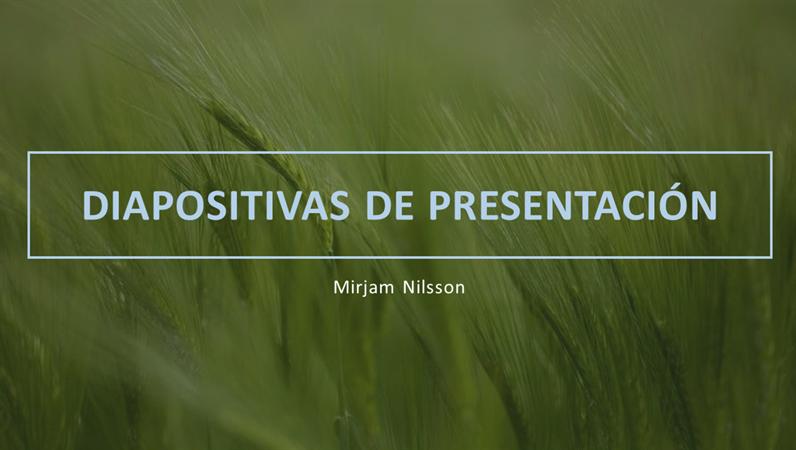 Plataforma de presentación verde