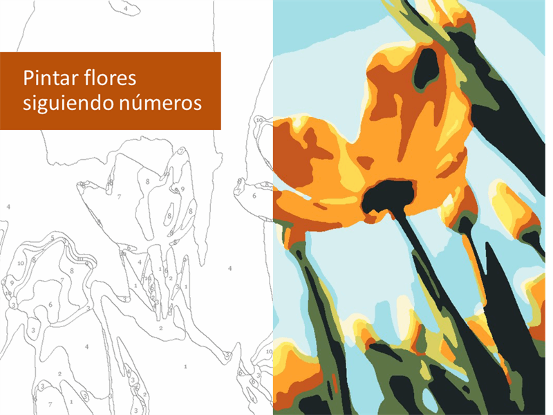 Pintar flores siguiendo números