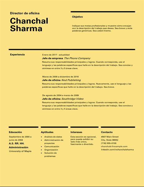 Currículo de diseño suizo