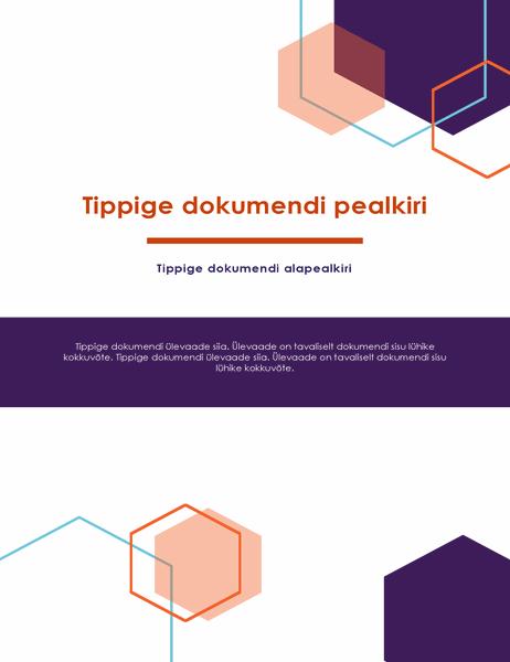 Aruanne (ametlik kujundus)