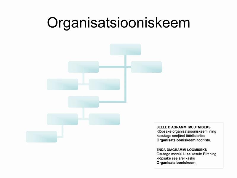 Keerukas organisatsiooniskeem