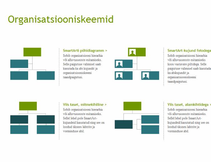 Organisatsiooniskeemid (visuaalsed)