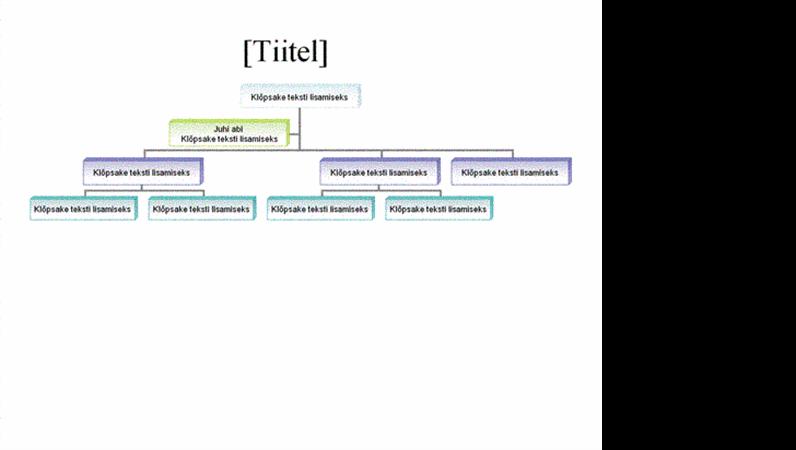 Organisatsiooniskeem