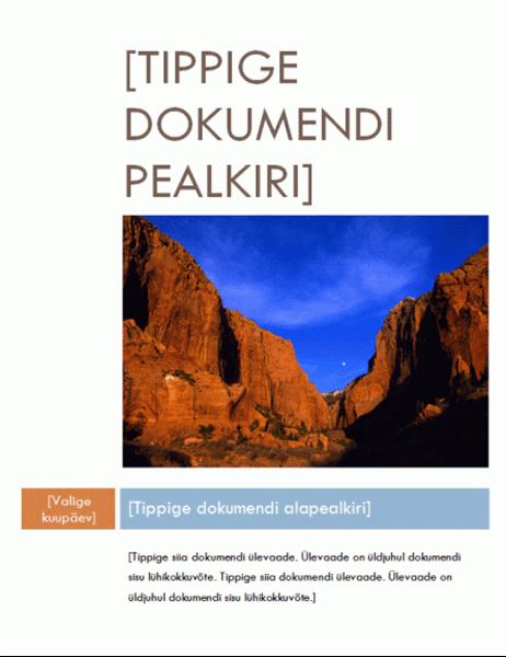 Aruanne (keskpärane kujundus)