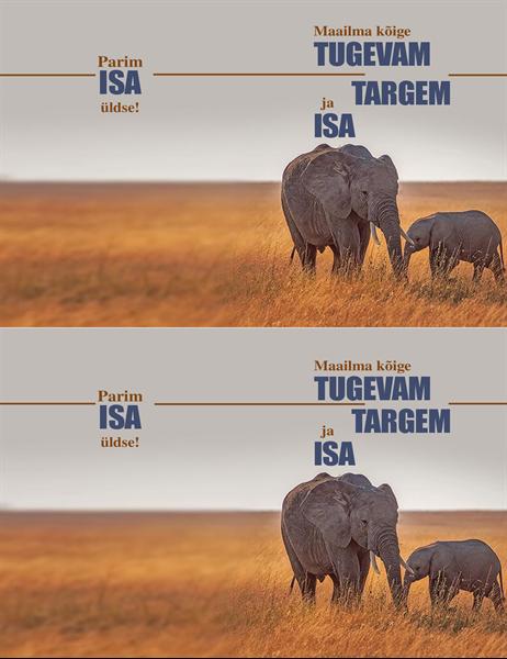Targa elevandi isadepäeva kaart