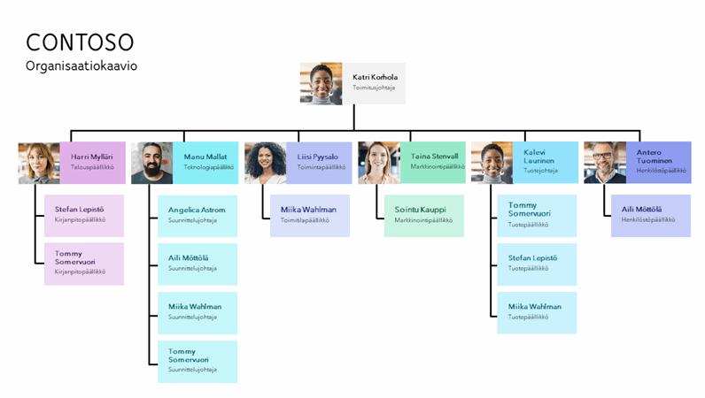 Minimaalinen organisaatiokaavio