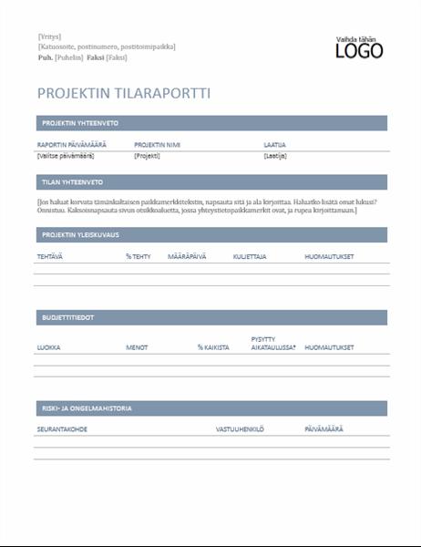 Projektin edistymisraportti