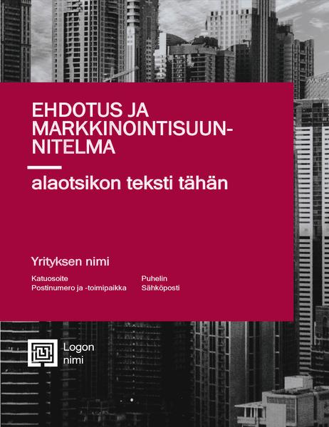 Yritysraportti (ammattimainen rakenne)