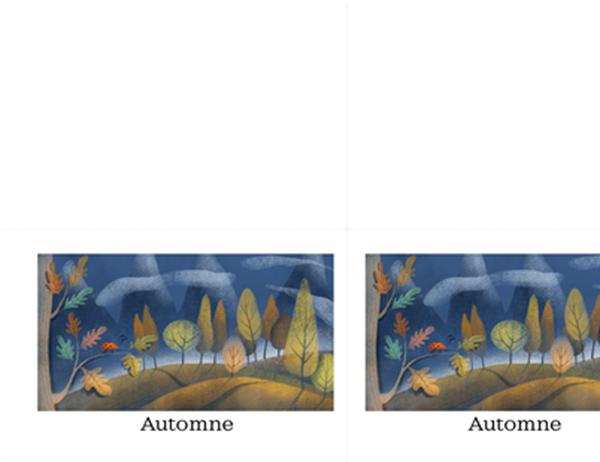 Cartes de vœux Coccinelle (pliées en quatre)