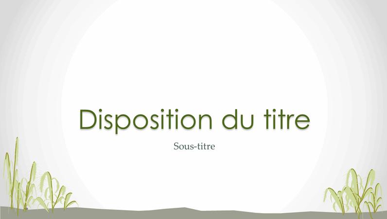 Diapositives de design littoral