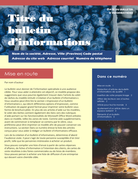 Bulletin d'informations professionnel (2 colonnes, 6 pages, envoi par publipostage)