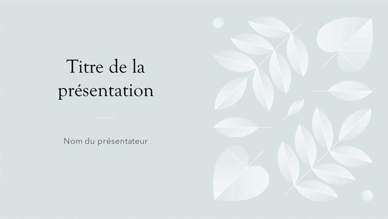 Design «Givré»