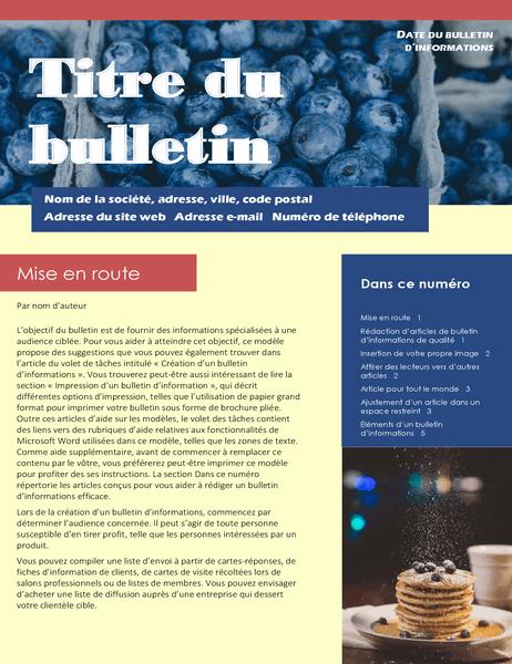 Bulletin d'informations professionnel (2-col., 6-pp., service de publipostage)