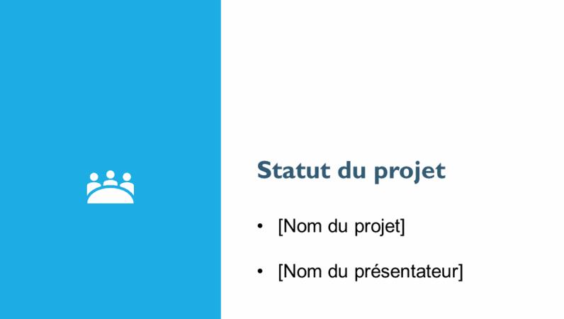 Présentation du rapport sur le statut du projet