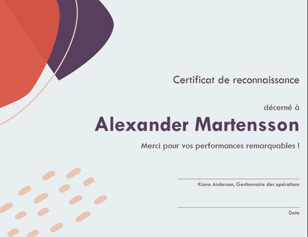 Certificat de reconnaissance d'aptitudes professionnelles dans le domaine administratif