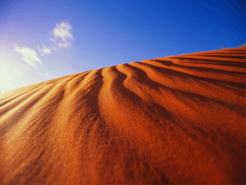 Thème désert - Dune scultée par le vent