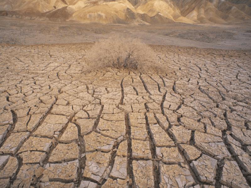 Thème désert - Sécheresse