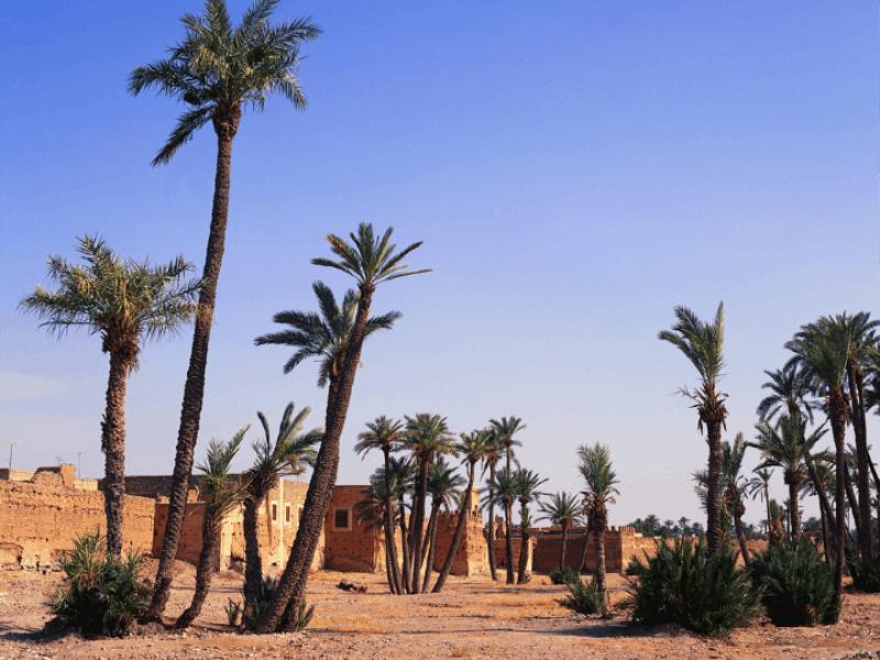 Thème désert - Village