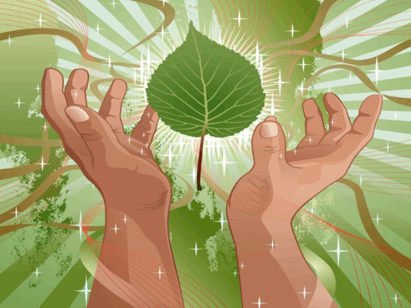 Thème écologie - Concept feuilles