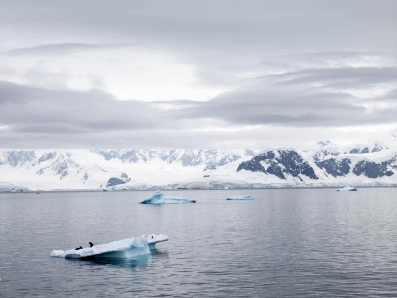 Thème mer - Iceberg