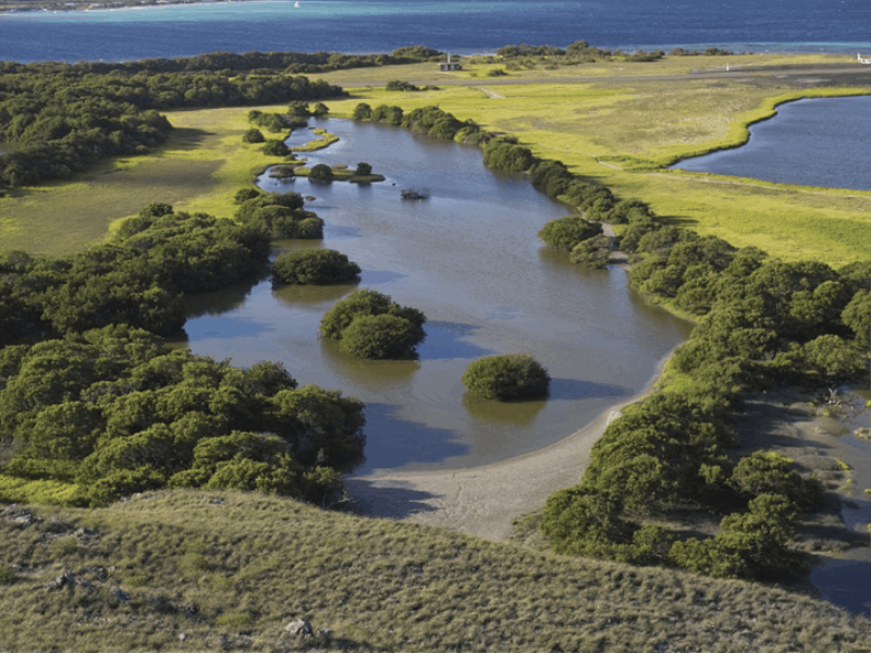 Thème mer - Lagune