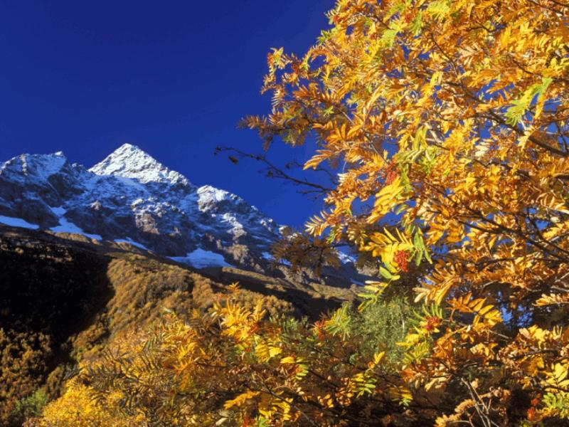 Thème montagne - Automne