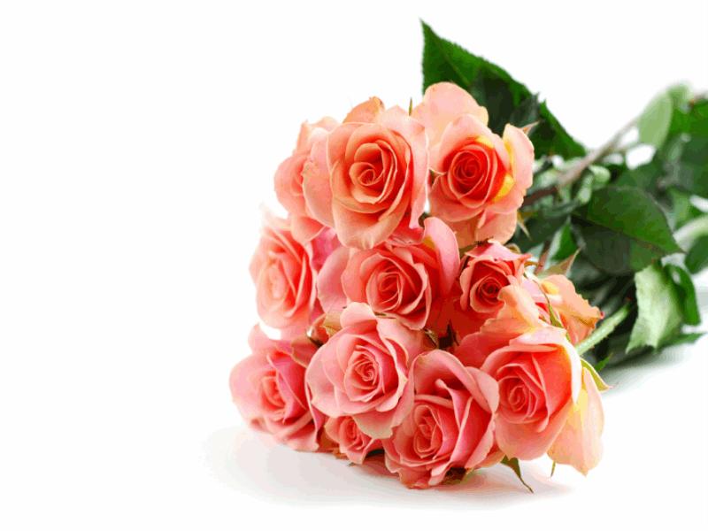 Thème Saint Valentin - Bouquet de roses