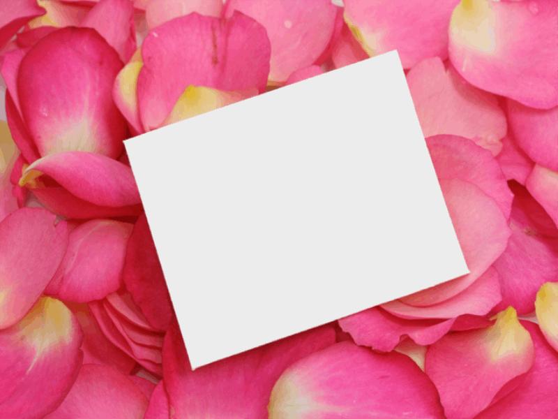 Thème Saint Valentin - Petales de roses