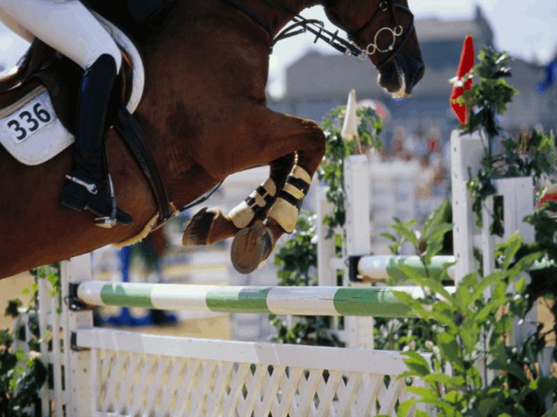 Thème équitation - Jump