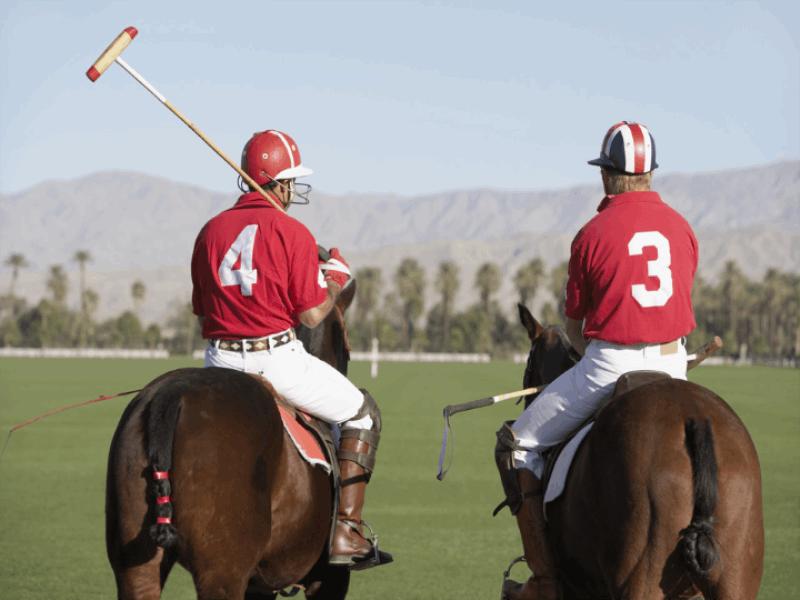 Thème équitation - Polo