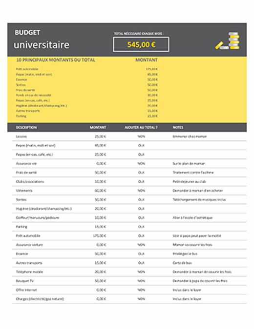 Budget universitaire