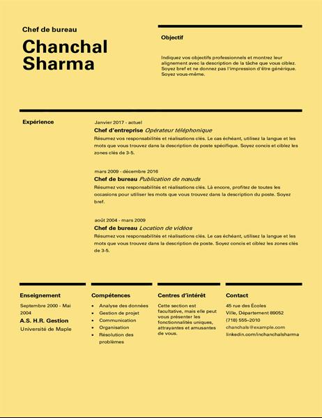 CV de conception suisse