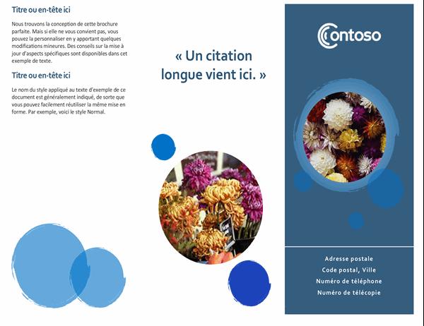 Brochure sphères bleues
