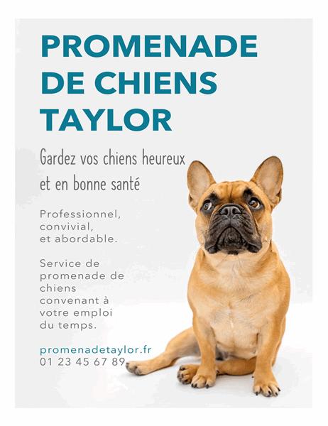 Affichette de promeneur de chiens.