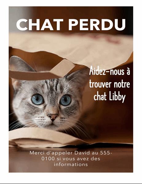 Affiche pour un chat perdu