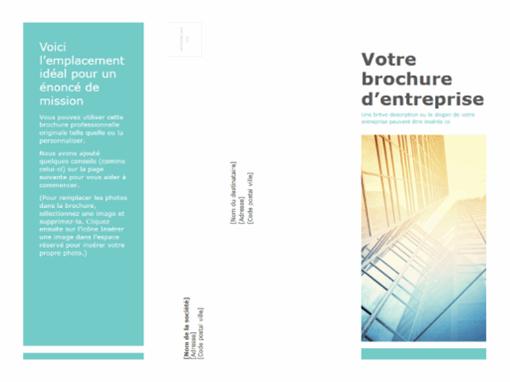 Brochure (professionnelle)