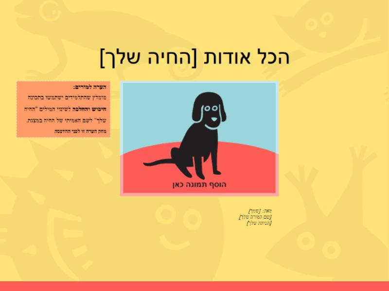 מצגת של עבודה על בעלי חיים (בית-ספר יסודי)