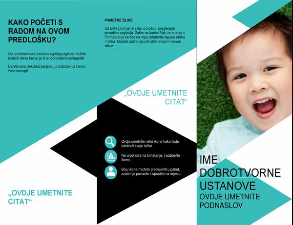 Brošura za neprofitne ustanove