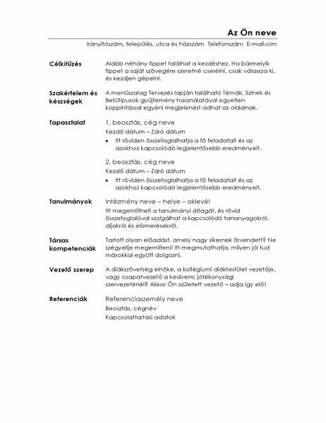 Funkcionális önéletrajz (Minimalista arculat)