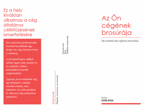 A cég brosúrája
