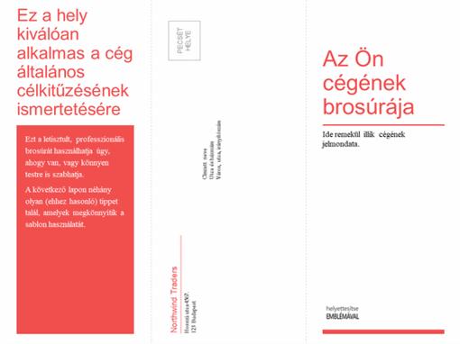 Hármas hajtású üzleti, egészségügyi prospektus (piros-fehér arculat)