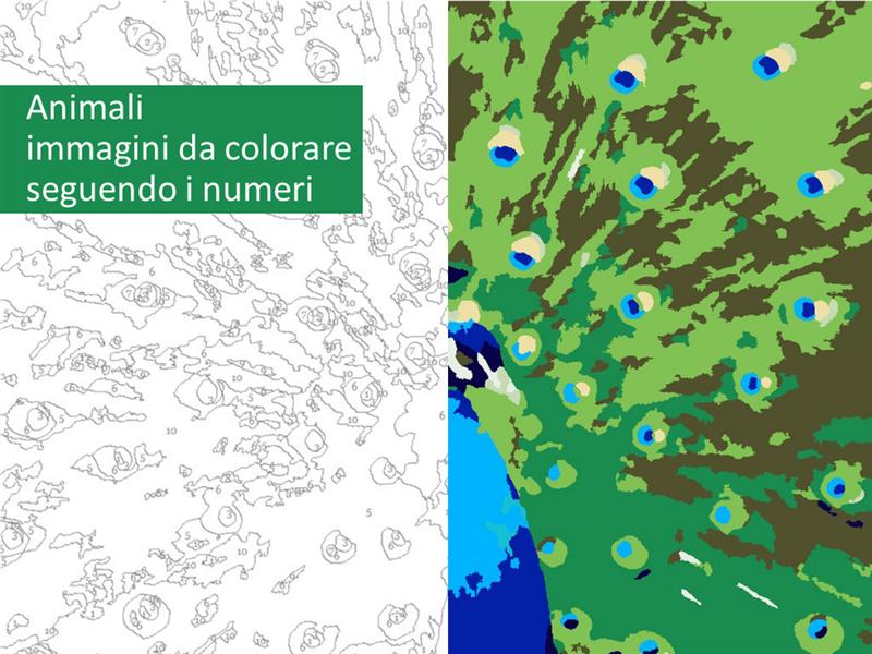 Immagini di animali da colorare seguendo i numeri