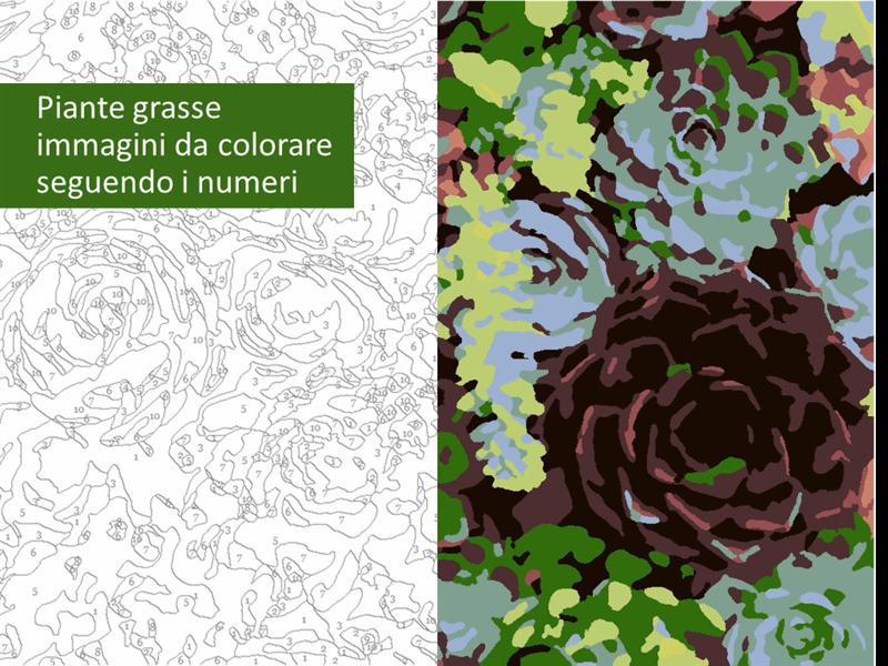 Immagini di piante grasse da colorare seguendo i numeri