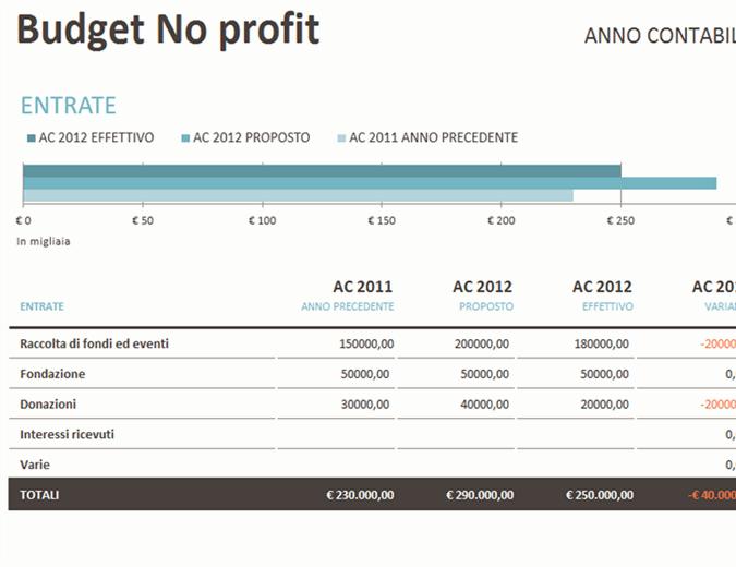 Budget no-profit con raccolta fondi