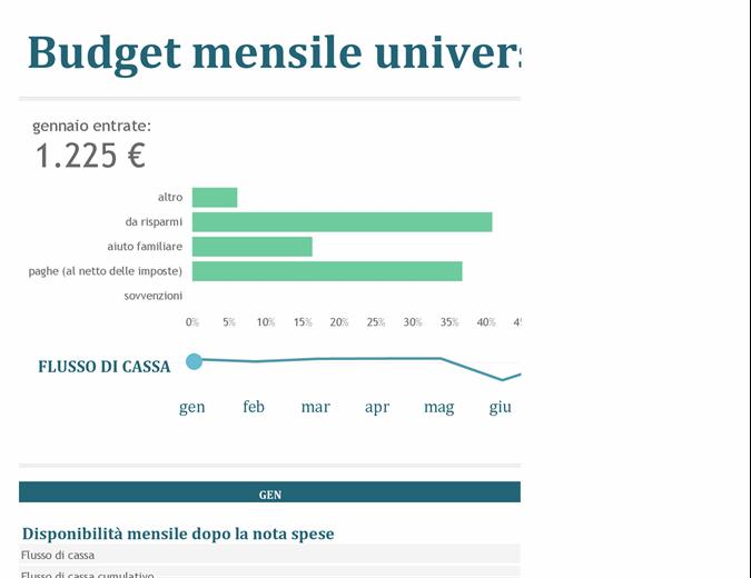 Budget mensile università