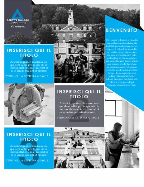 Newsletter universitaria